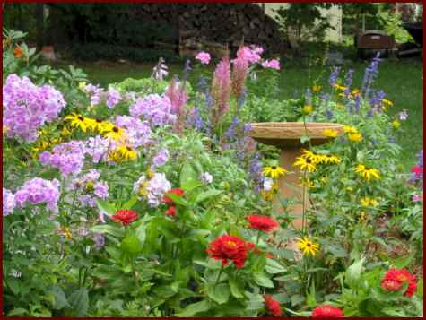 beautifulflowergarden